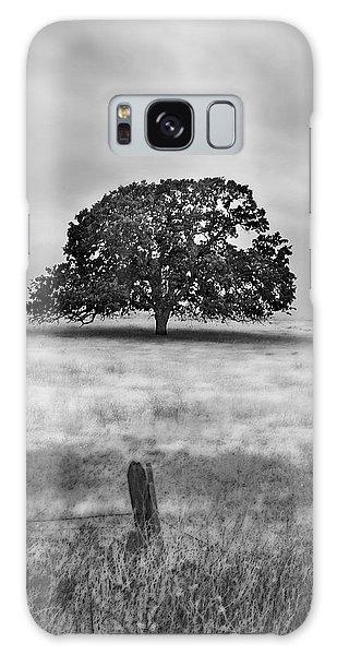 Lone Valley Oak Vertical Galaxy Case
