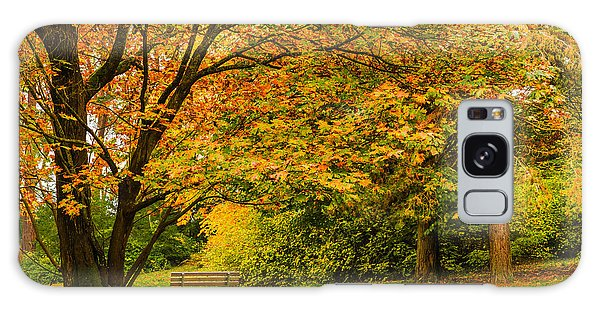 Lonely Autumn Bench Galaxy Case