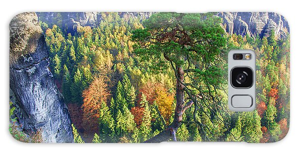 Lonely Tree In The Elbe Sandstone Mountains Galaxy Case