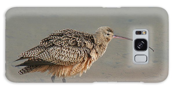 Long-billed Curlew Galaxy Case by Bob and Jan Shriner