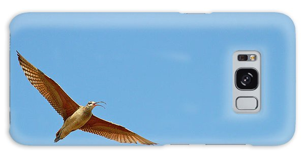 Long-billed Curlew In Flight Galaxy Case