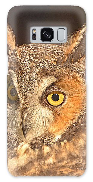 Long-eared Owl Galaxy Case