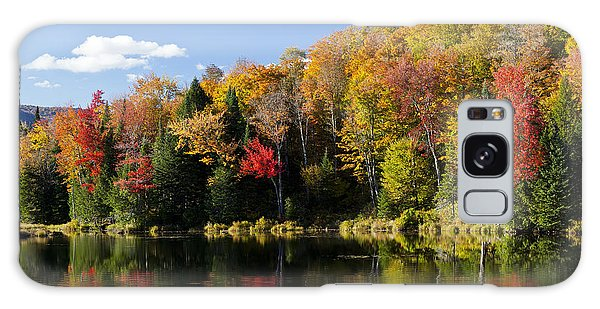 Long Pond Autumn Galaxy Case