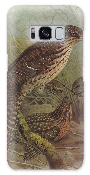 Cuckoo Galaxy Case - Long Tailed Cuckoo And Grey Warbler by Dreyer Wildlife Print Collections