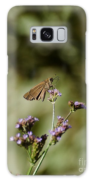 Long-winged Skipper Butterfly Galaxy Case