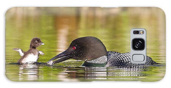 Loon Chick Excited For Breakfast Galaxy Case