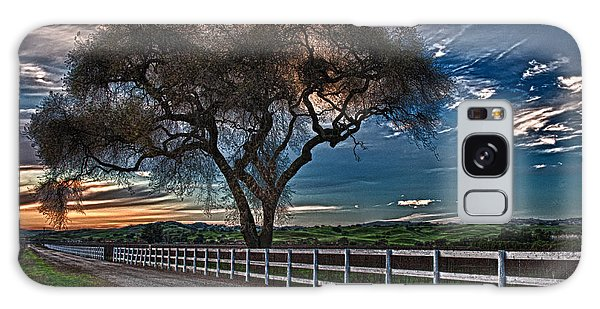 Los Alamos Vineyard Oak Galaxy Case