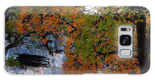 Fall Foliage At Lost Maples State Natural Area  Galaxy Case