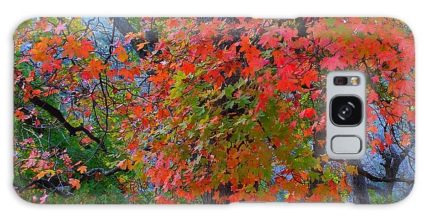 Lost Maples Fall Foliage Galaxy Case