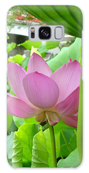 Lotus And Bridge Galaxy Case by Larry Knipfing
