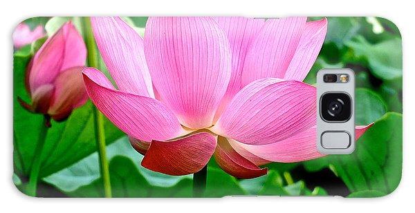 Lotus Heaven - 68 Galaxy Case