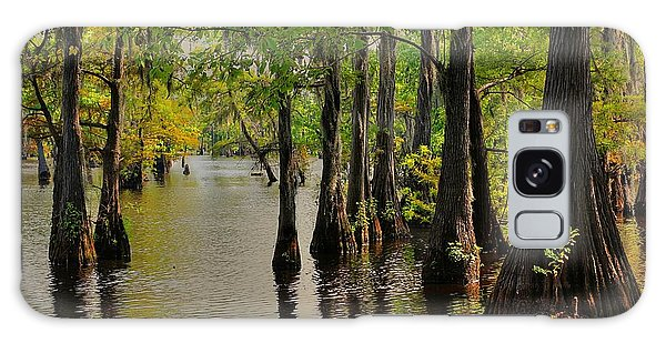 Louisiana Cypress Swamp Galaxy Case