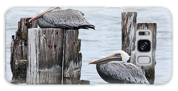 Louisiana Pelicans On Lake Ponchartrain Galaxy Case