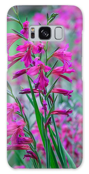 Louisiana Pink Iris Fulva Galaxy Case