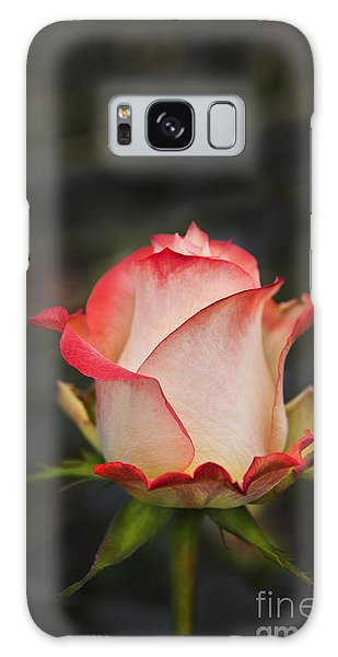 Love Is A Rose II Galaxy Case