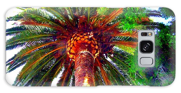 Love Under The Palm In San Diego Galaxy Case