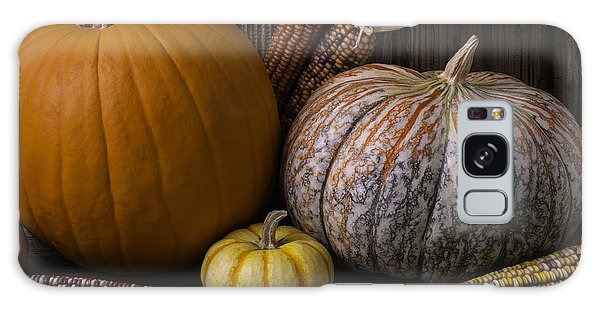 Gourd Galaxy Case - Lovely Autumn Still Life by Garry Gay
