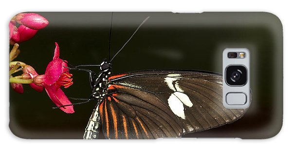 Lovely Longwing Galaxy Case