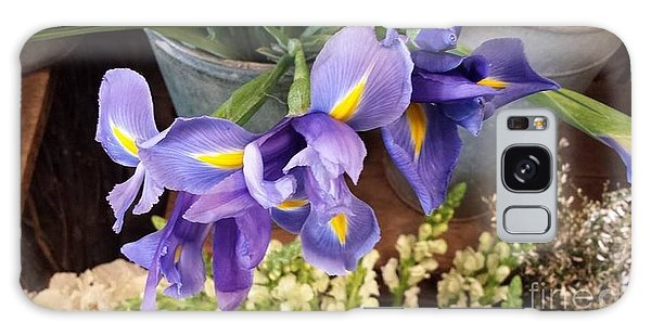 Lovely Purple Irises Galaxy Case by Charlotte Gray