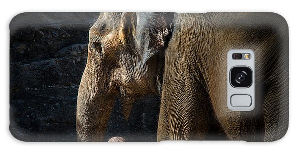 Lucky The Elephant Galaxy Case