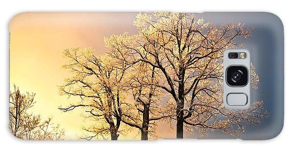 Luminous - Blue Ridge Winter Sunset Galaxy Case