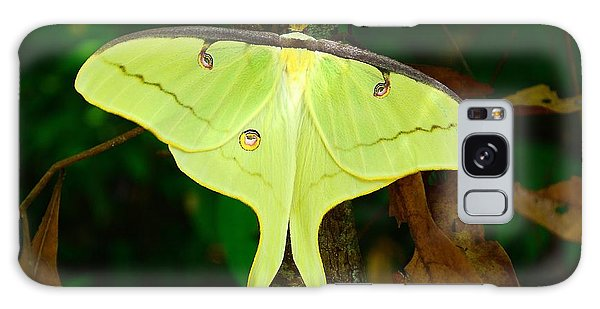 Luna Moth Galaxy Case by Kathy Baccari