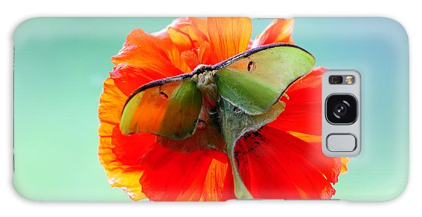 Luna Moth On Poppy Aqua Back Ground Galaxy Case by Randall Branham