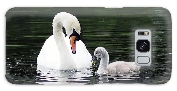 Lunchtime For Swan And Cygnet Galaxy Case