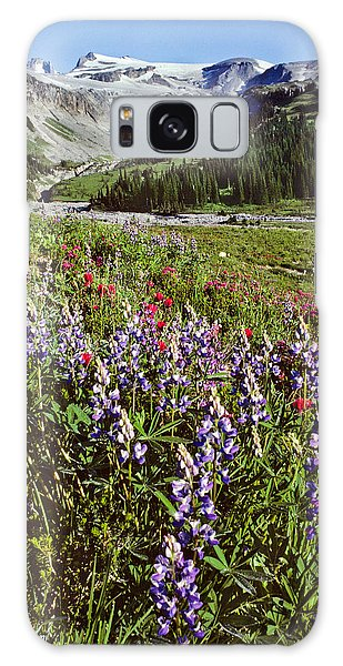Lupine And Paintbrush Blooming At Indian Bar Galaxy Case