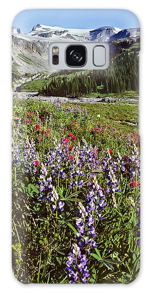 Lupine And Paintbrush Blooming At Indian Bar Galaxy Case by Jeff Goulden