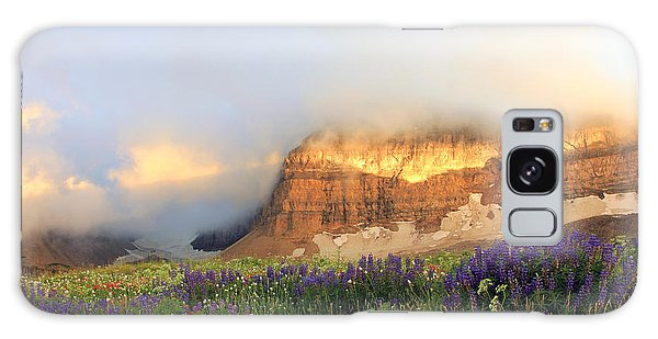 Lupine Wildflowers On Mount Timpanogos Galaxy Case