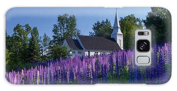 Lupines At St. Matthews In Sugar Hill Galaxy Case