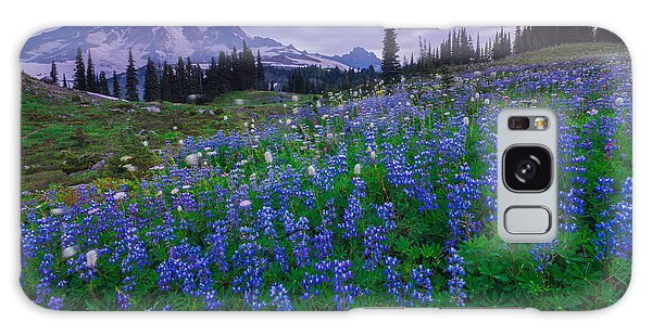 Lupines Dawn Galaxy Case by Gene Garnace