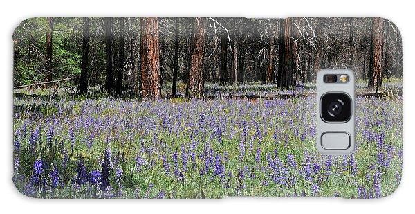 Lupines In Yosemite Valley Galaxy Case by Lynn Bauer