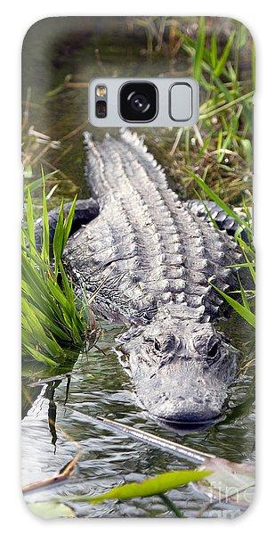 Lurking Alligator Galaxy Case