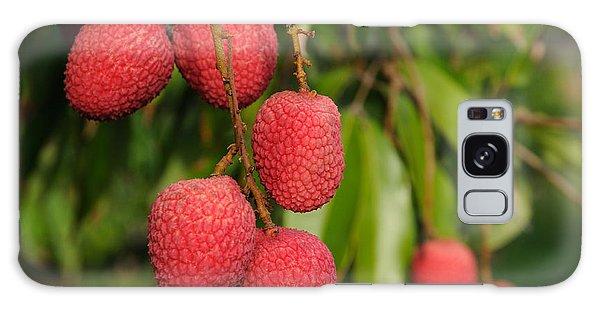 Lychee Fruit On Tree Galaxy Case