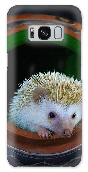 Lyla The Hedgehog Galaxy Case