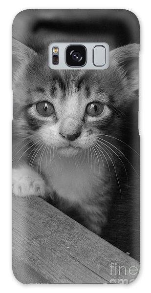 M Kitten Galaxy Case by Tannis  Baldwin