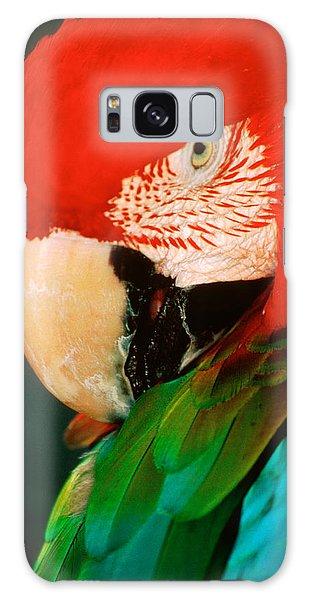Macaw Galaxy Case - Macaw Portrait by Anonymous