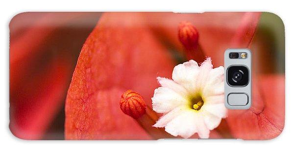 Macro Bougainvillea Bloom 1 Galaxy Case