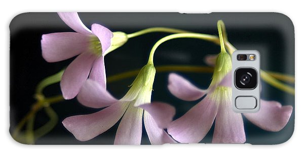 Macro Clover Galaxy Case by Greg Allore