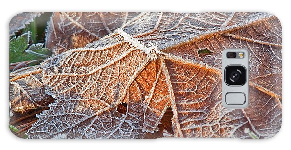 Macro Nature Image Of Fallen Leaf With Frost Galaxy Case