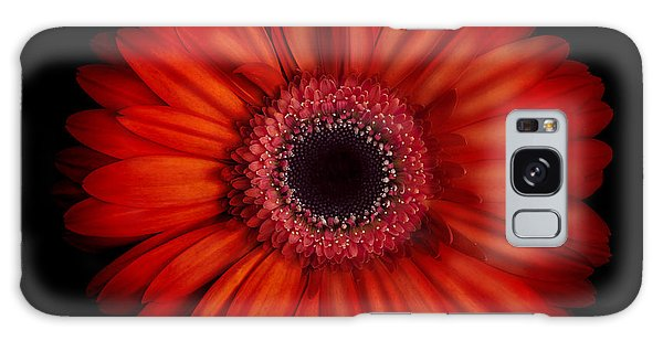 Macro Photograph Of An Red And Orange Gerbera Daisy Against A Black Background Galaxy Case