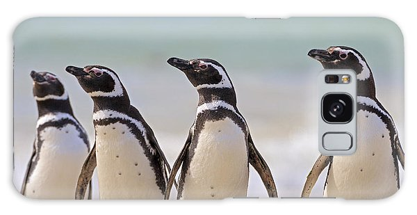 Carcass Galaxy Case - Magellanic Penguins Carcass Island by Heike Odermatt