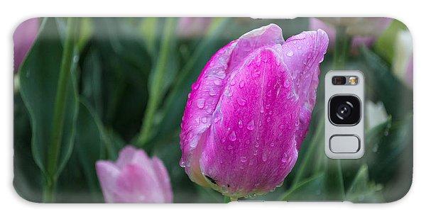Magenta Tulip In Rain At Brandenburg Galaxy Case