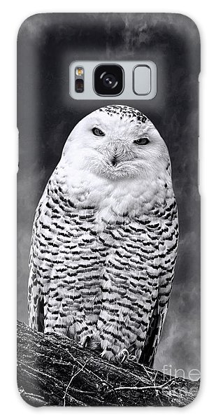 Magic Beauty - Snowy Owl Galaxy Case by Adam Olsen