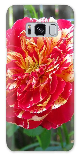 Magical Rose Galaxy Case