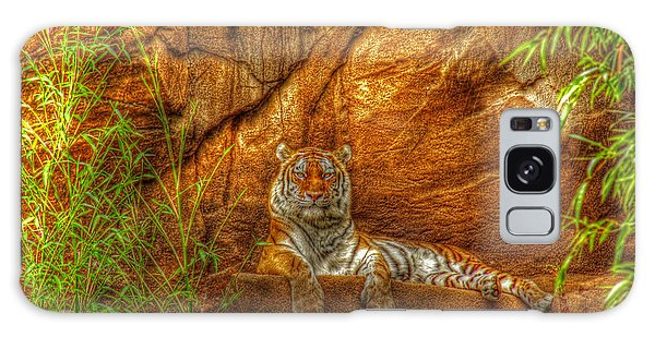 Magnificent Tiger Resting Galaxy Case