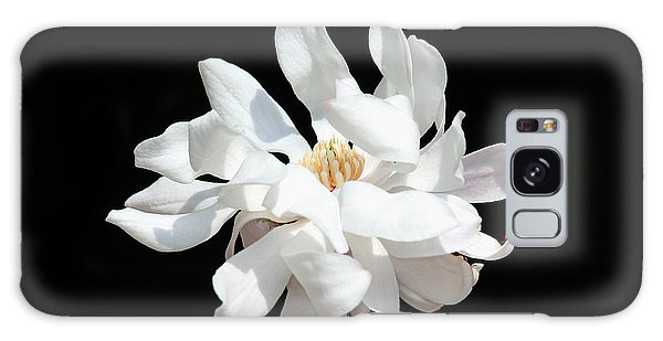 Magnolia Blossom Galaxy Case by Trina  Ansel