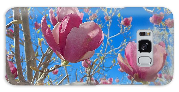 Magnolia Tree Blossoms 2 Galaxy Case